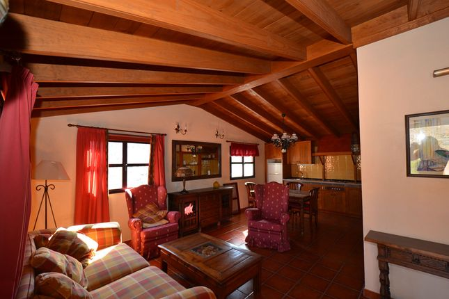 Guest House Canary Islands For Sale