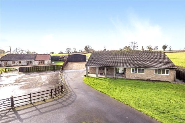 Thumbnail Detached house for sale in Pen Selwood, Wincanton, Somerset