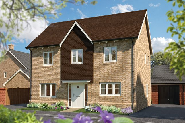 "Thumbnail Detached house for sale in ""The Chestnut"" at Hadham Road, Bishop's Stortford"