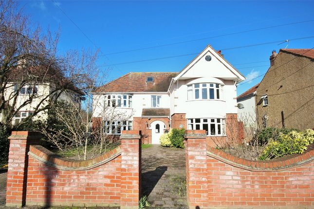Thumbnail Detached house for sale in Darcy Road, Colchester, Essex