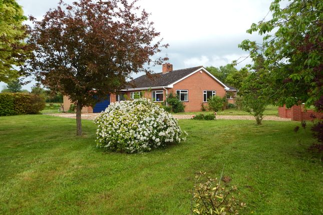 Thumbnail Detached bungalow to rent in Lipe Lane Ruishton, Taunton