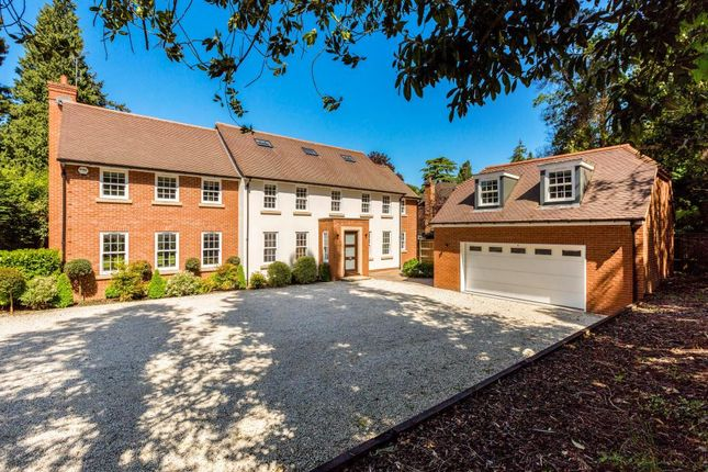 Thumbnail Detached house for sale in St. Marys Hill, Ascot