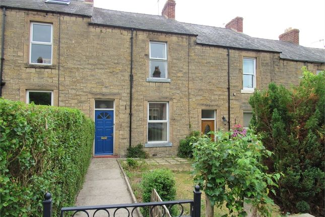 Thumbnail Terraced house to rent in Windsor Terrace, Hexham, Northumberland.