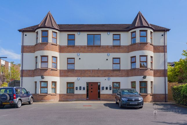 Thumbnail Flat to rent in Cedar View, Belfast