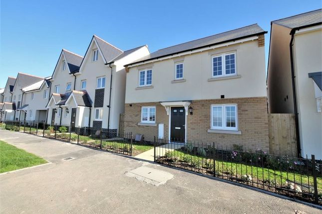 Thumbnail Detached house for sale in Wigeon Road, Bude, Cornwall