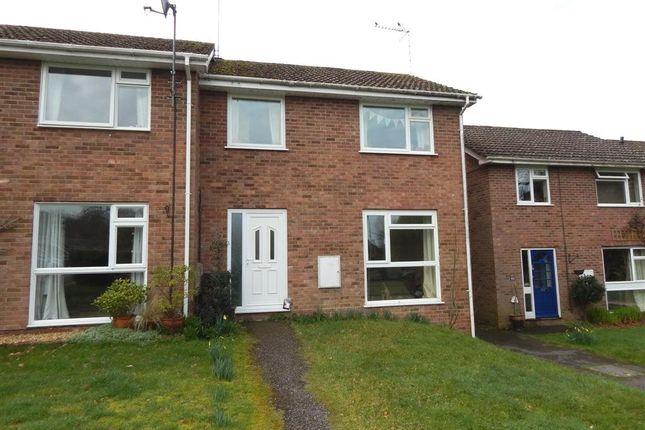 Thumbnail Semi-detached house to rent in Windsor Way, Alderholt, Fordingbridge