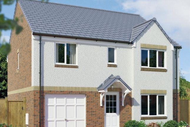 """Thumbnail Detached house for sale in """"The Whithorn"""" at Greenlees Road, Cambuslang, Glasgow"""