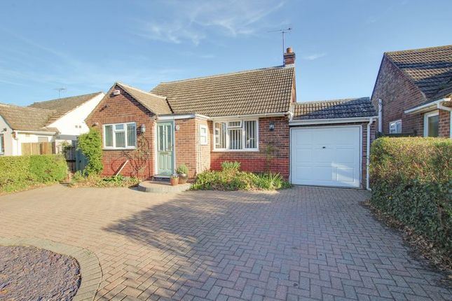 Thumbnail Detached bungalow for sale in Shelley Road, Colchester