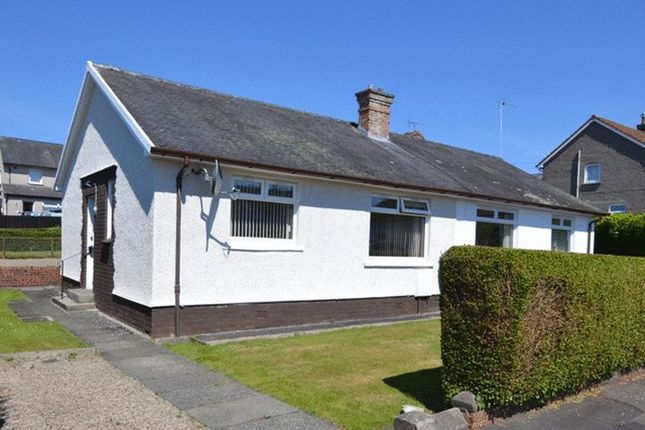 Thumbnail Semi-detached bungalow for sale in Mair Avenue, Dalry