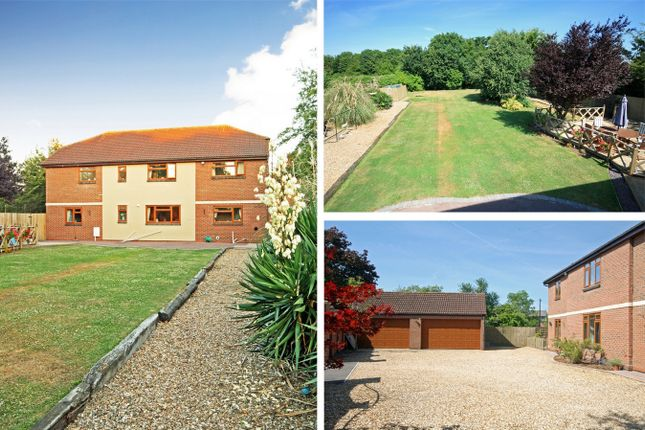 Thumbnail Detached house for sale in Netheridge Close, Hempsted, Gloucester