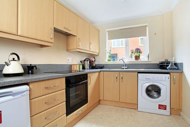 Thumbnail Property to rent in Three Cuppes Lane, Salisbury