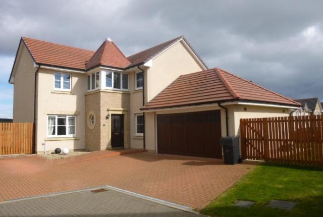 Thumbnail Detached house to rent in Devenick Court, Portlethen