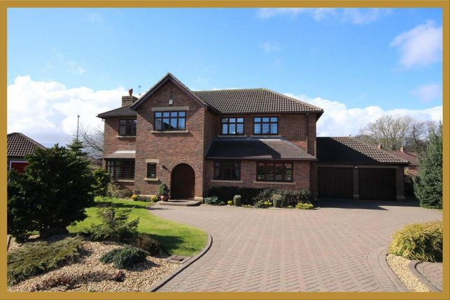 Thumbnail Detached house for sale in Cleadon Towers, South Shields, South Shields