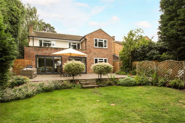 Thumbnail Detached house for sale in Michelet Close, Lightwater, Surrey