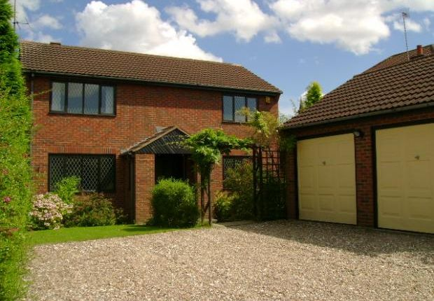 Thumbnail Detached house to rent in 22 De Morgan Close, Underwood, Nottinghamshire
