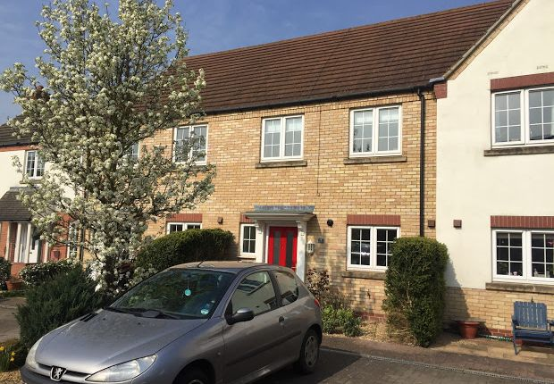 Thumbnail Terraced house to rent in Ramsey St Marys, Ramsey, Huntingdon