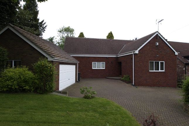 Thumbnail Detached bungalow to rent in Willow Bank, Barnsley