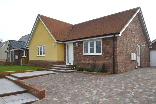 Thumbnail Detached bungalow for sale in Plot 1 'old Stables', Walton Road, Kirby-Le-Soken, Frinton-On-Sea, Essex