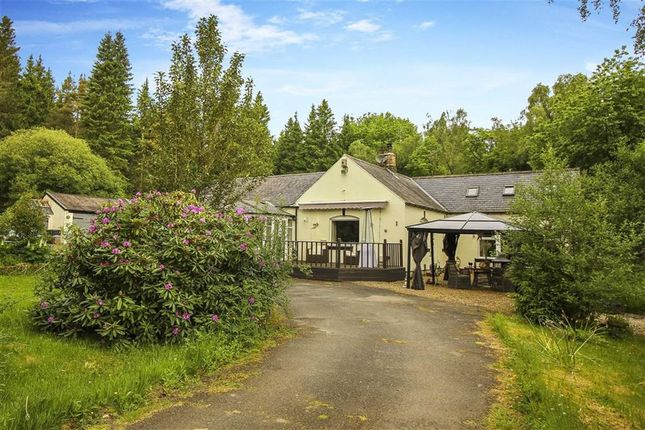 Thumbnail Bungalow for sale in Tarset, Hexham, Northumberland