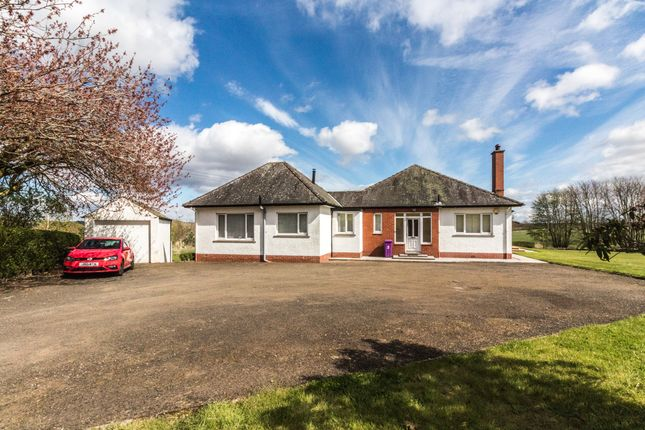 Thumbnail Detached house to rent in Lour Road, Forfar