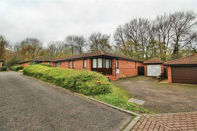Thumbnail Detached bungalow to rent in Trubys Garden, Coffee Hall, Milton Keynes