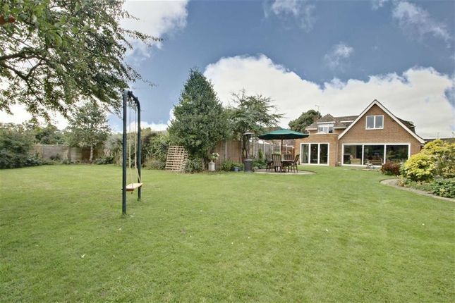 Thumbnail Detached house for sale in Grove Park, Tring