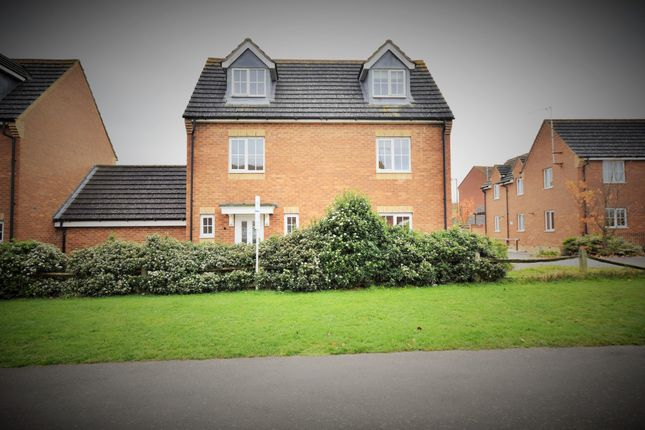 Thumbnail Link-detached house to rent in Walker Grove, Hatfield, Hertfordshire