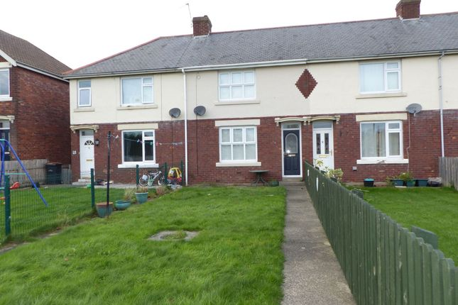 Thumbnail Terraced house to rent in Pelaw Square, Chester Le Street