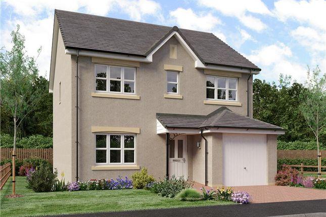 "Thumbnail Detached house for sale in ""Shaw"" at Ravenscroft Street, Edinburgh"