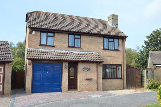 Thumbnail Property to rent in Willow Way, Bridport