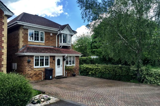Thumbnail Detached house to rent in The Cornfields, Hatch Warren, Basingstoke