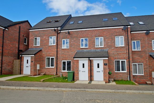 Thumbnail Terraced house to rent in Redshank Drive, Hetton-Le-Hole, Houghton Le Spring