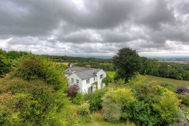 Thumbnail Detached house for sale in Mount Pleasant Cottage, Mount Pleasant, Harrowbarrow, Callington, Cornwall