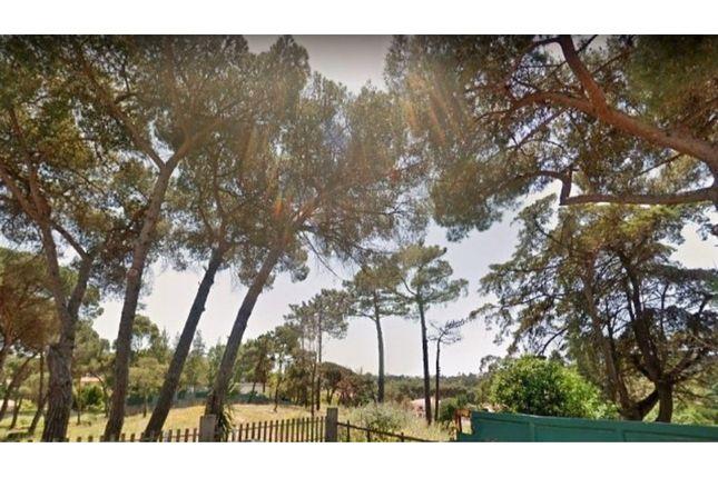 Thumbnail Land for sale in Martinha (Estoril), Cascais E Estoril, Cascais
