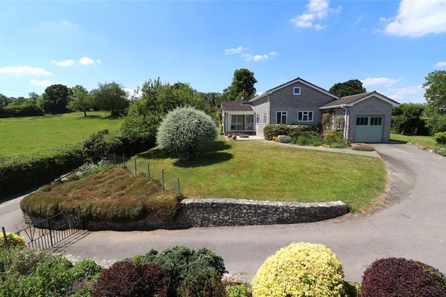 Thumbnail Detached bungalow for sale in Chaffcombe, Chard, Somerset