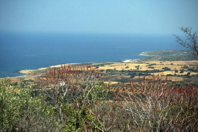 Monemvasia Xifias, Monemvassia, Laconia, Peloponnese, Greece