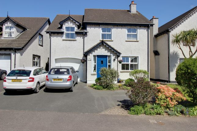 Thumbnail Detached house for sale in Cairndore Way, Newtownards