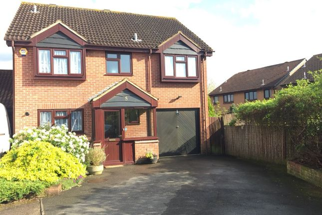 Thumbnail Detached house to rent in Chirk Close, Hayes