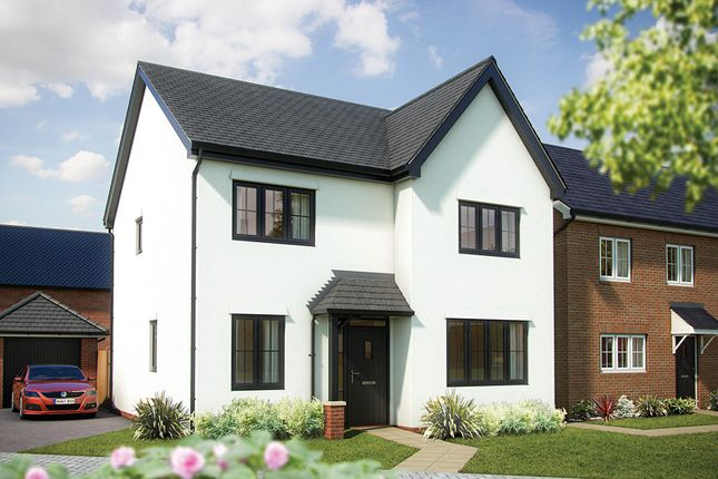 """4 bedroom detached house for sale in """"The Aspen"""" at London Road, Norman Cross, Peterborough"""