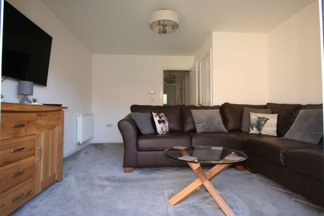Lounge of Starling Close, Halstead CO9