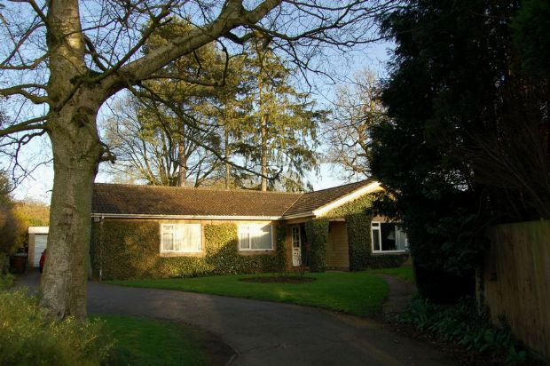 Thumbnail Detached bungalow for sale in Sywell Road, Overstone, Northampton