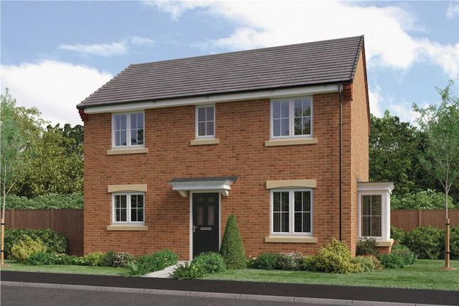 "Thumbnail Detached house for sale in ""The Darwin Da"" at Ladyburn Way, Hadston, Morpeth"
