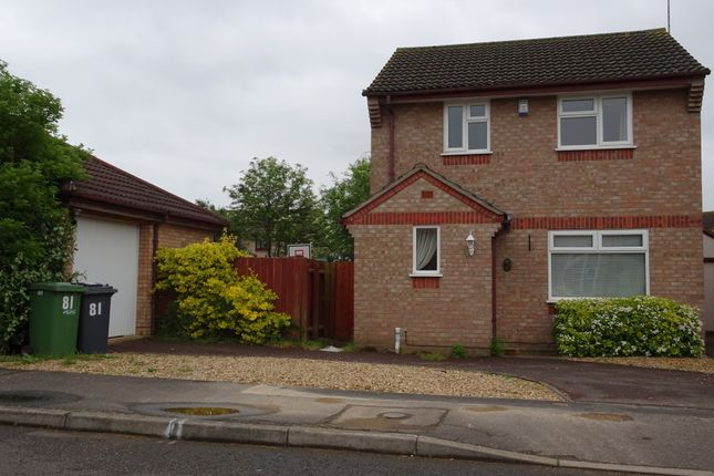 Thumbnail Detached house to rent in Caldbeck Close, Peterborough