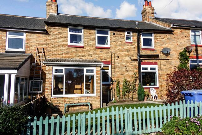 Thumbnail Terraced house for sale in Beacon Road, Hampeth, Morpeth