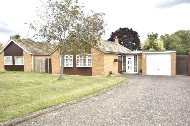 Thumbnail Bungalow for sale in Quat Goose Lane, Swindon Village, Cheltenham, Gloucestershire