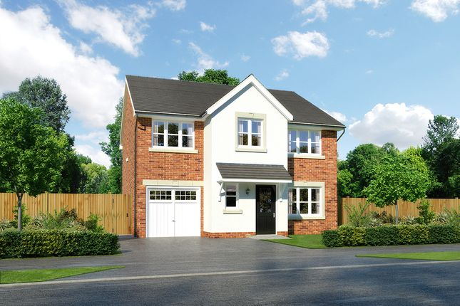 """Thumbnail Detached house for sale in """"Heddon"""" at Moorfields, Willaston, Nantwich"""