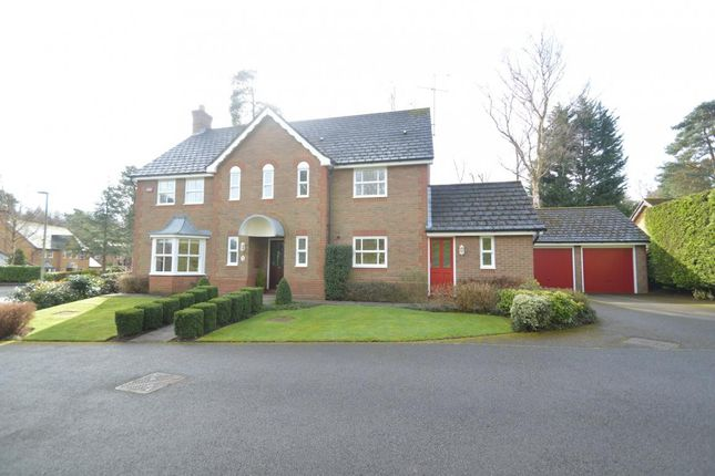 Thumbnail Detached house for sale in Little Fryth, Finchampstead