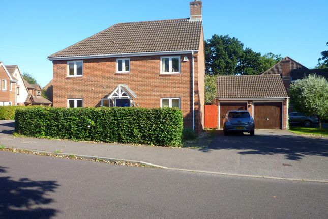 Thumbnail Detached house to rent in Creech View, Denmead, Waterlooville