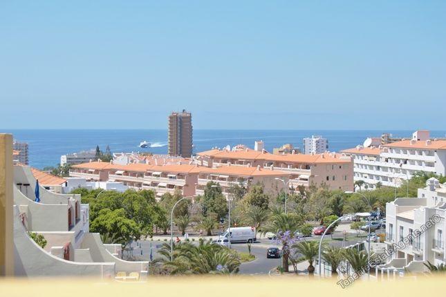 Los Cristianos, Tenerife, Spain