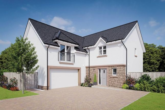 "Thumbnail Detached house for sale in ""The Dewar Ic"" at Drysdale Avenue, Falkirk"